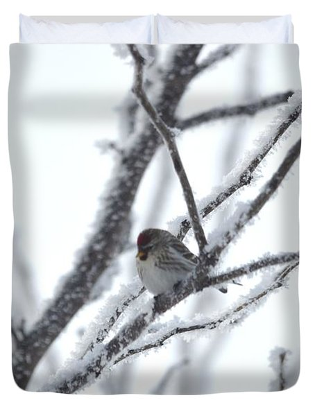 Duvet Cover featuring the photograph Frosted Branches by Dacia Doroff