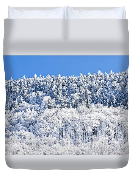 Frosted Mountainside Duvet Cover