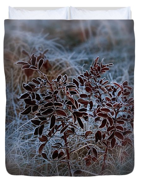 Frosted Rugosa Duvet Cover by Susan Capuano