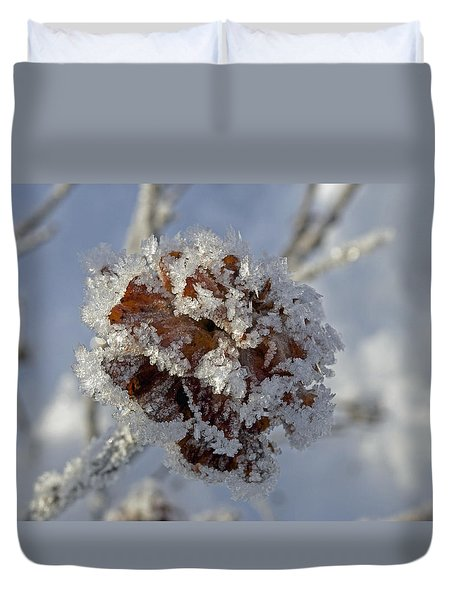 Frosted Willow Rose Duvet Cover