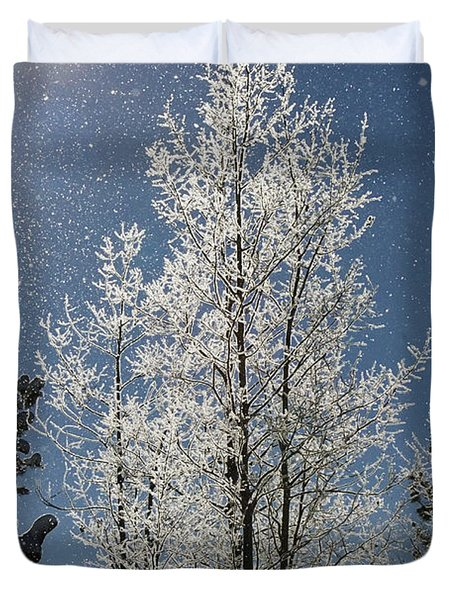 Frosty Colorado Aspen Duvet Cover