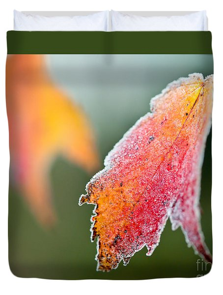 Frosty Leaf Duvet Cover by Kerri Farley