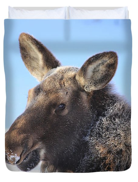 Frosty Moose Duvet Cover
