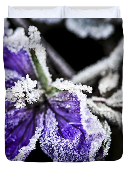 Frosty Purple Flower In Late Fall Duvet Cover