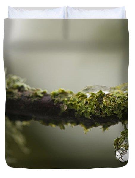 Frozen Droplet Duvet Cover by Anne Gilbert