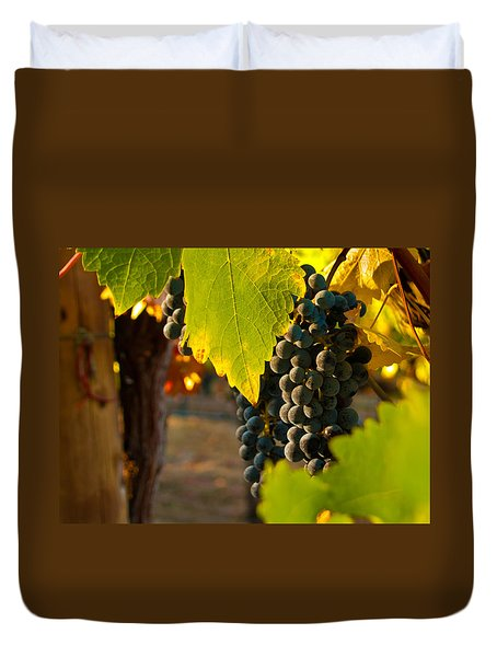 Fruit Of The Vine Duvet Cover by Bill Gallagher
