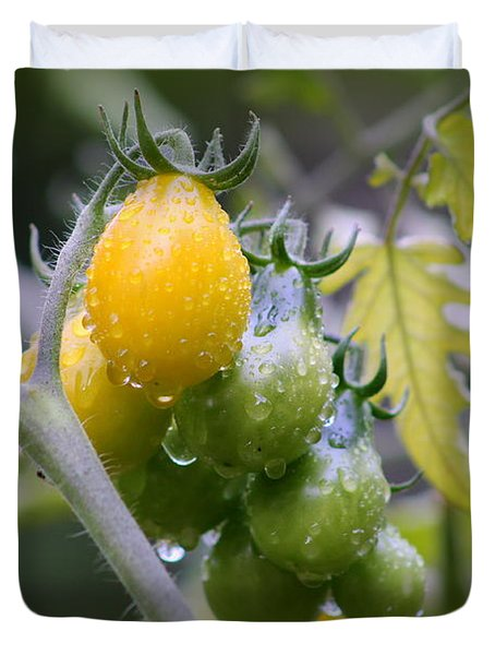 Fruits Of Our Labours Duvet Cover by Leone Lund