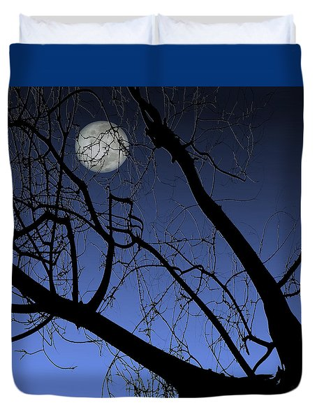 Full Moon And Black Winter Tree Duvet Cover by Ben and Raisa Gertsberg