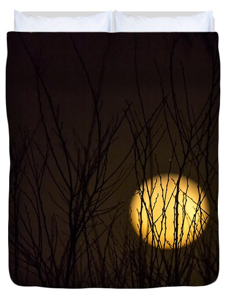 Full Moon Behind The Trees Duvet Cover by Angela A Stanton