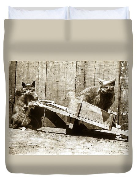 Duvet Cover featuring the photograph Fun With Cats Henry King Nourse Photographer Circa 1900 by California Views Mr Pat Hathaway Archives