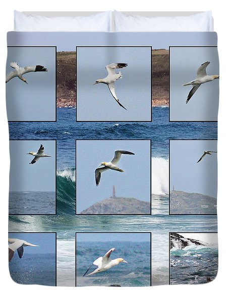 Gannets Galore Duvet Cover by Terri Waters