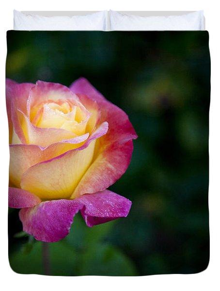 Duvet Cover featuring the photograph Garden Tea Rose by David Millenheft
