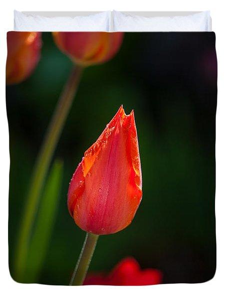 Garden Tulips Duvet Cover
