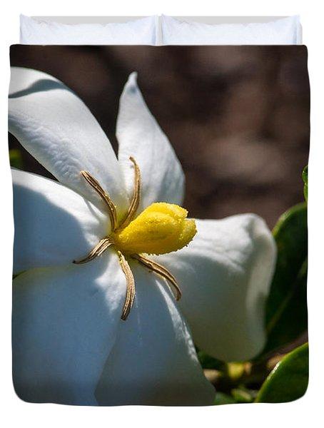 Gardenia At Twilight 2 Duvet Cover