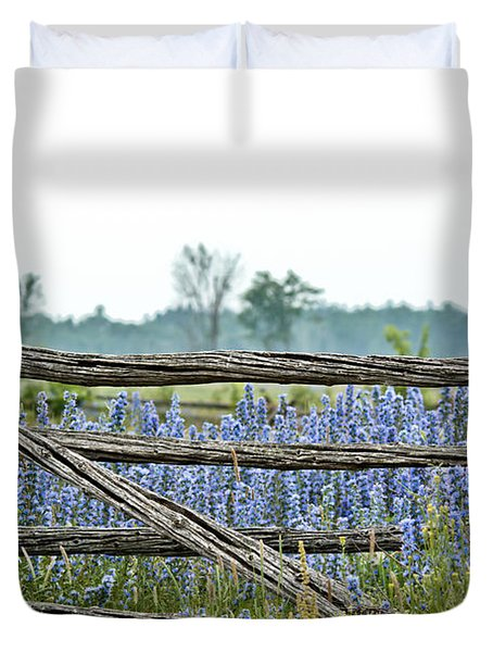Gate To Blue Duvet Cover by Cheryl Baxter