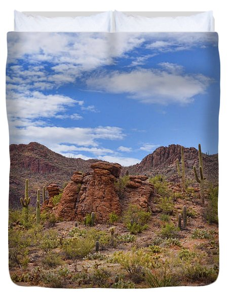 Gates Pass Scenic View Duvet Cover