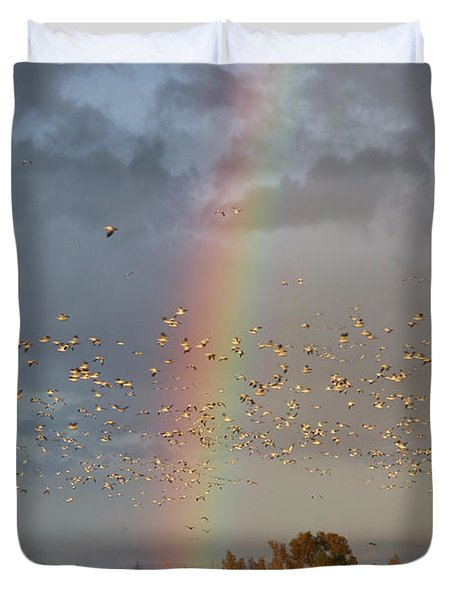 Geese And Rainbow Duvet Cover