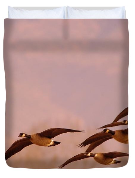 Geese Flying Over Duvet Cover by Jeff Swan
