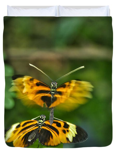 Duvet Cover featuring the photograph Gentle Butterfly Courtship 03 by Thomas Woolworth