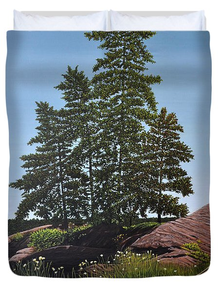 Georgian Bay Beached Canoe Duvet Cover