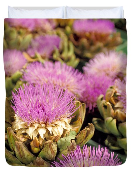 Germany Aachen Munsterplatz Artichoke Flowers Duvet Cover