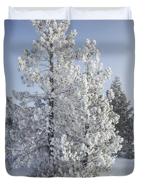 Ghost Trees Of Yellowstone Duvet Cover by Sandra Bronstein