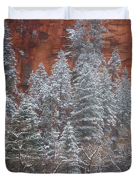 Ghosts Of Winter Duvet Cover by Peter Coskun