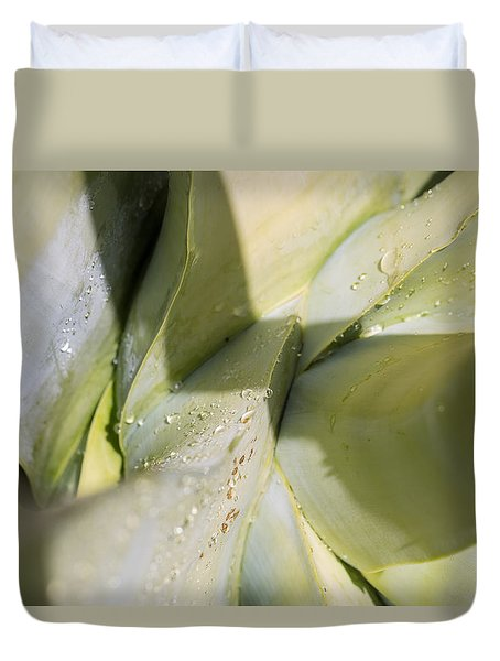 Giant Agave Abstract 3 Duvet Cover