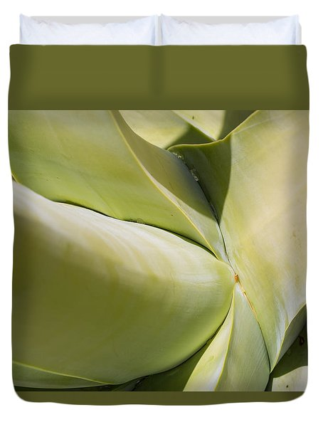 Giant Agave Abstract 9 Duvet Cover