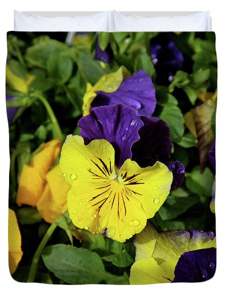 Giant Garden Pansies Duvet Cover by Ed  Riche