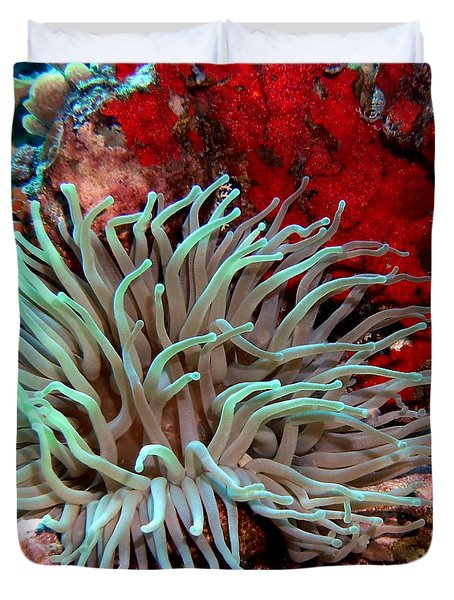 Duvet Cover featuring the photograph Giant Green Sea Anemone Against Red Coral by Amy McDaniel