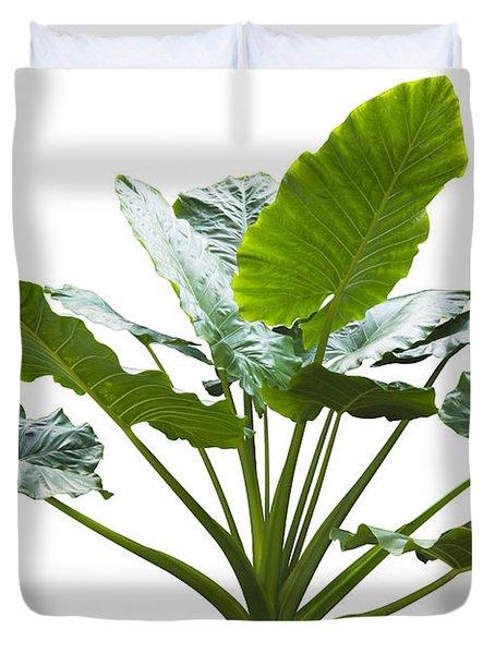 Giant Leaf Duvet Cover by Atiketta Sangasaeng