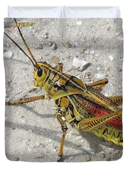 Duvet Cover featuring the photograph Giant Orange Grasshopper by Ron Davidson