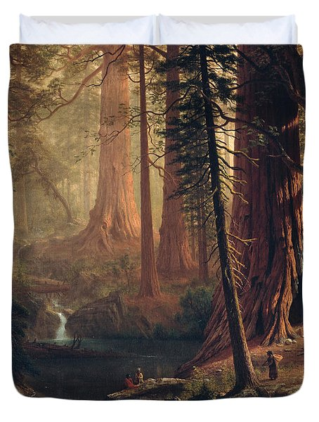 Giant Redwood Trees Of California Duvet Cover