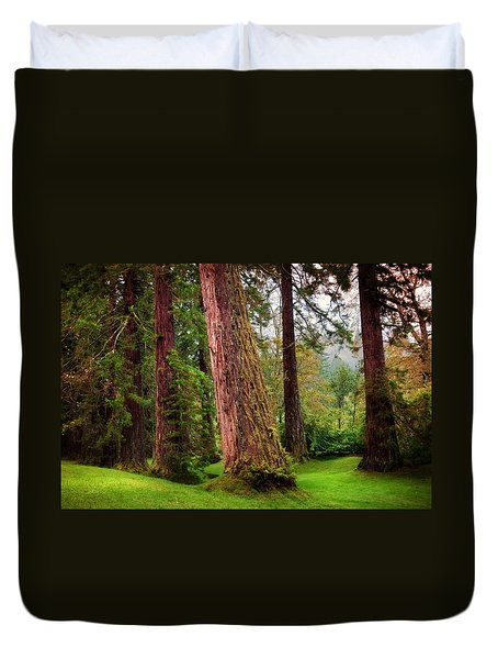 Giant Sequoias. Benmore Botanical Garden. Scotland Duvet Cover by Jenny Rainbow