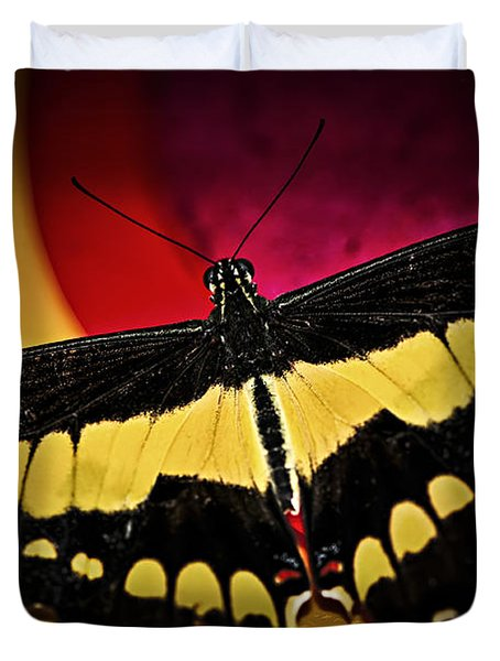 Giant Swallowtail Butterfly Duvet Cover by Elena Elisseeva