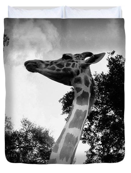 Giraffe Bw - Global Wildlife Center Duvet Cover by Beth Vincent