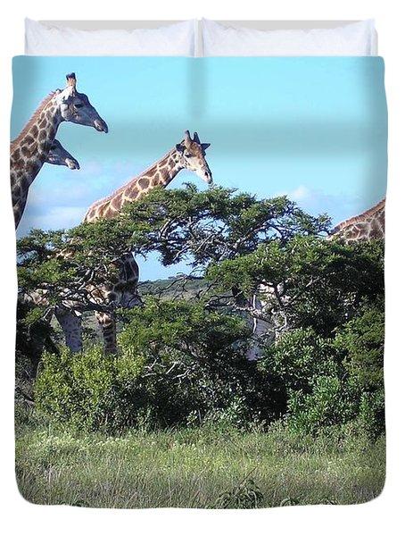 Giraffe Family Group Duvet Cover