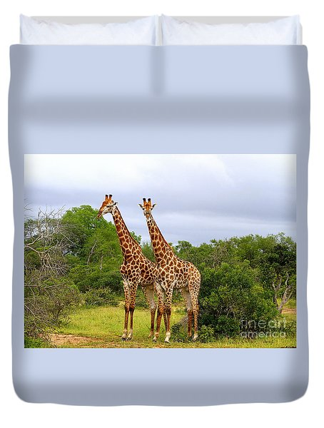 Giraffe Males Before The Storm Duvet Cover