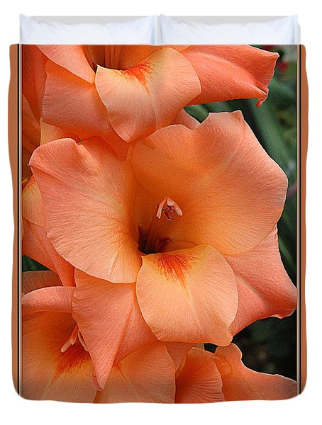 Gladiola In Peach Duvet Cover
