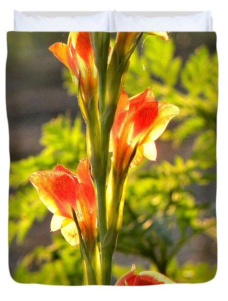Gladiolus Sun Duvet Cover