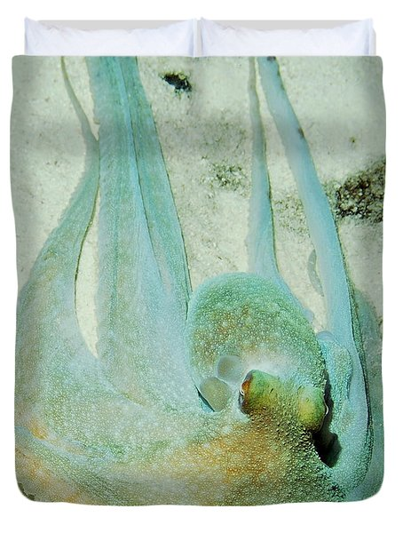 Duvet Cover featuring the photograph Gliding Reef Octopus by Amy McDaniel