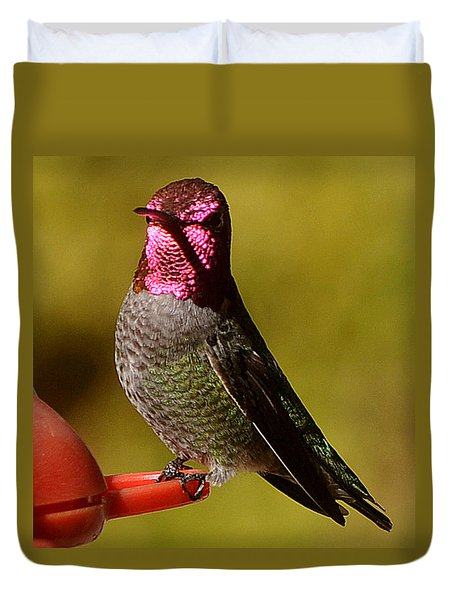 Duvet Cover featuring the photograph Glimmering Red Headed Mail Anna by Jay Milo