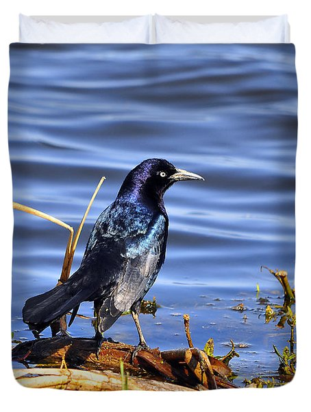 Glorious Grackle Duvet Cover by Al Powell Photography USA
