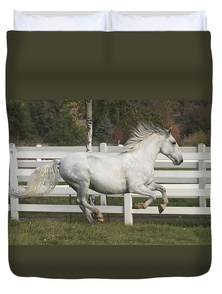Duvet Cover featuring the photograph Glorious Gunther D2972 by Wes and Dotty Weber