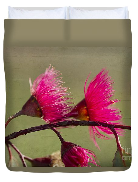 Glowing In The Afternoon Sun Duvet Cover by Linda Lees