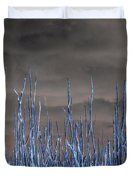 Duvet Cover featuring the photograph Glowing Trees 1 by Anthony Wilkening