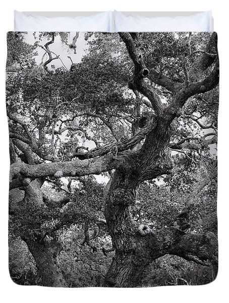 Gnarly Tree  Duvet Cover