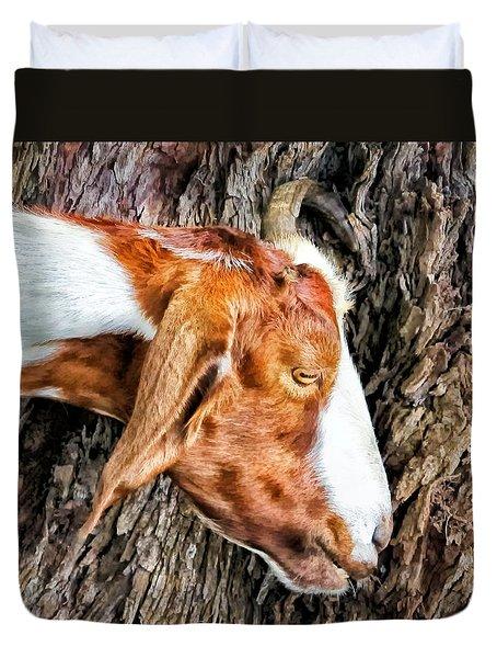 Duvet Cover featuring the photograph Goat 3 by Dawn Eshelman