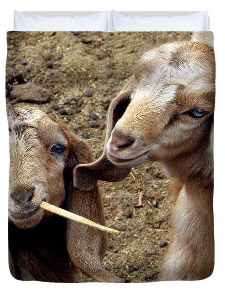 Goats #2 Duvet Cover